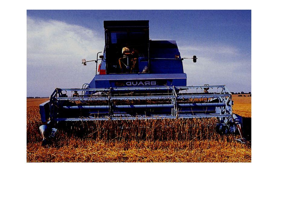 Croissance disparités Inégalités de revenu en 1984 : 1 à 16 Dimension économique Orientation technico-économique Facteurs exogènes : Politique agricole commune : répartition inégale aides 80% pour 20% agriculteurs