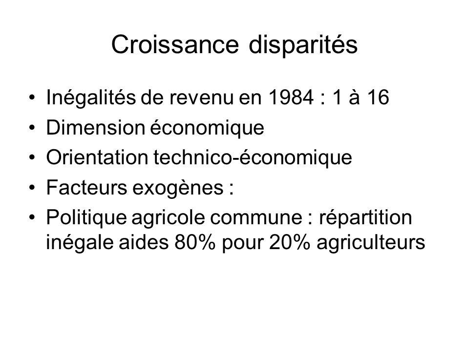 Croissance disparités Inégalités de revenu en 1984 : 1 à 16 Dimension économique Orientation technico-économique Facteurs exogènes : Politique agricol