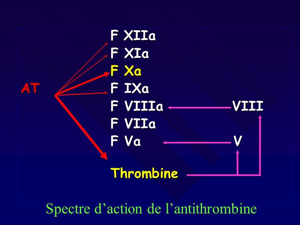 Autres sites de fixation PF4: granules plaquettaires PF4: granules plaquettaires F.Willebrand F.Willebrand Fibronectine Fibronectine FXIII FXIII HRGP HRGP Cellules: endothélium, macrophages Cellules: endothélium, macrophages