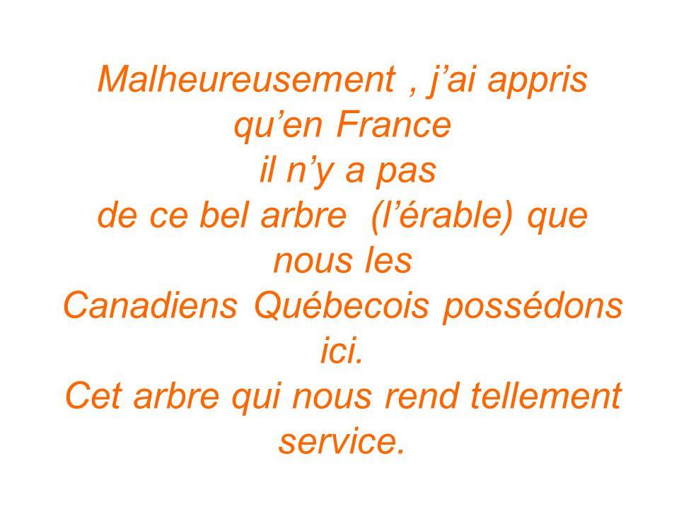 Malheureusement, jai appris quen France il ny a pas de ce bel arbre (lérable) que nous les Canadiens Québecois possédons ici. Cet arbre qui nous rend