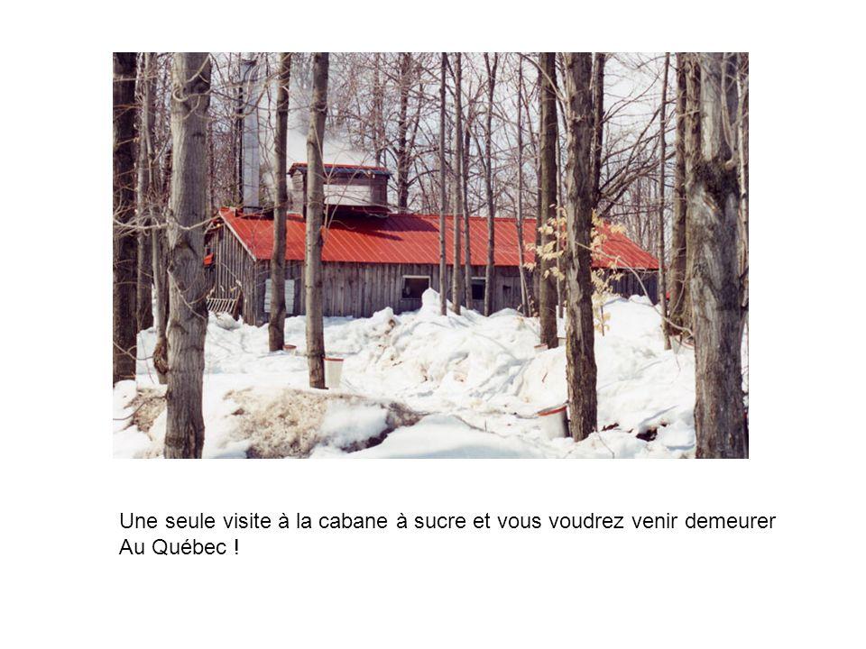 Une seule visite à la cabane à sucre et vous voudrez venir demeurer Au Québec !