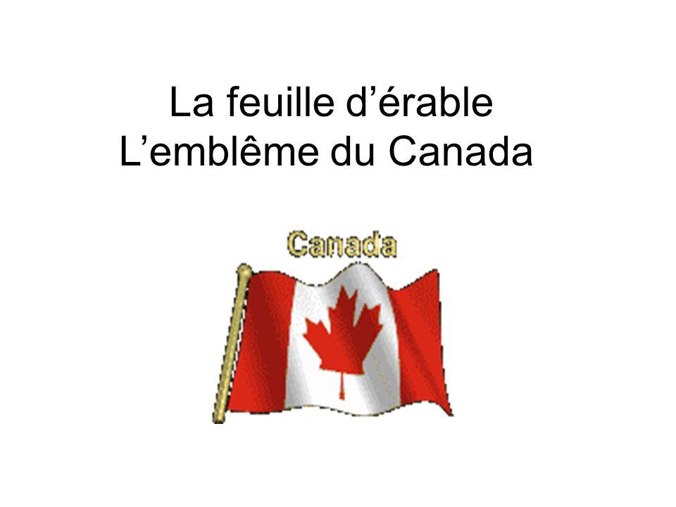 La feuille dérable Lemblême du Canada