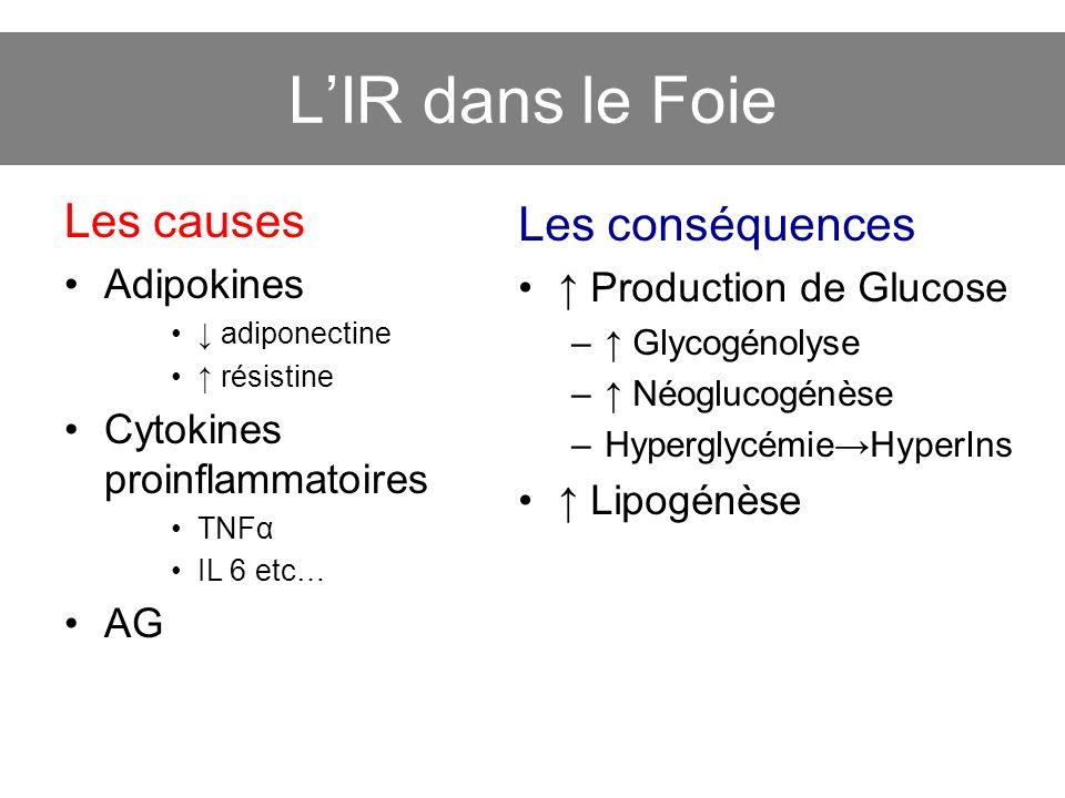 LIR dans le Foie Les causes Adipokines adiponectine résistine Cytokines proinflammatoires TNFα IL 6 etc… AG Les conséquences Production de Glucose – G