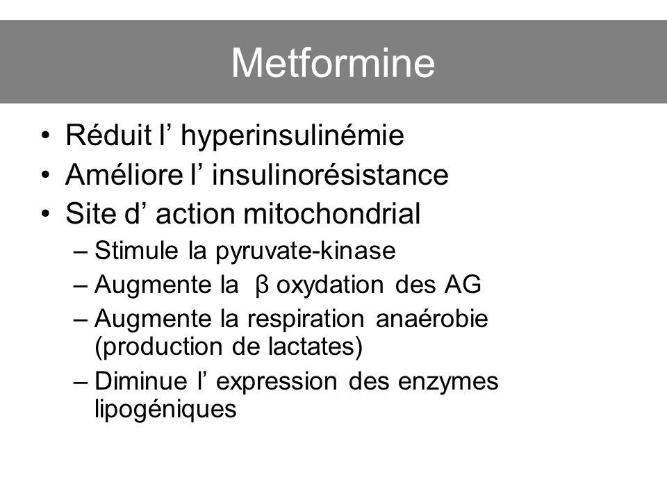 Metformine Réduit l hyperinsulinémie Améliore l insulinorésistance Site d action mitochondrial –Stimule la pyruvate-kinase –Augmente la β oxydation de