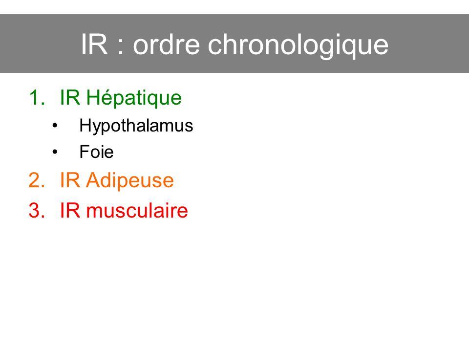 IR : ordre chronologique 1.IR Hépatique Hypothalamus Foie 2.IR Adipeuse 3.IR musculaire