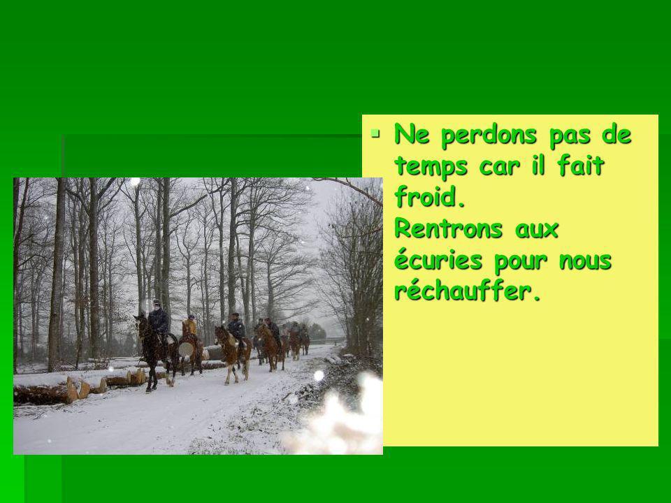 Petite pose photo dans la magnifique forêt de Mervent- Vouvant. Petite pose photo dans la magnifique forêt de Mervent- Vouvant.