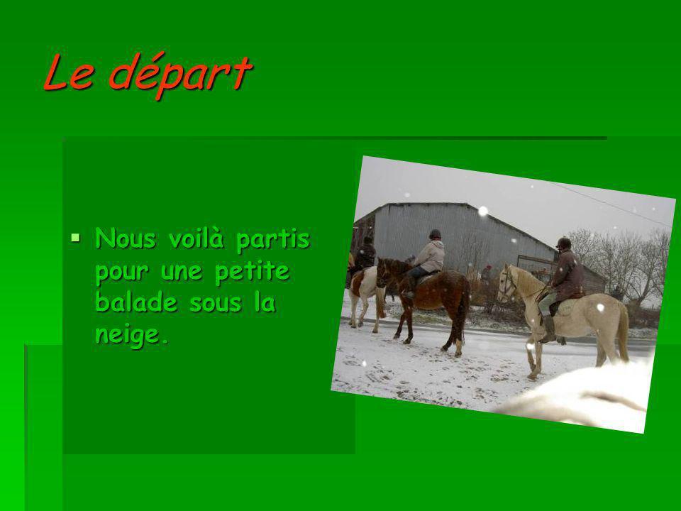 Balade à cheval sous la neige