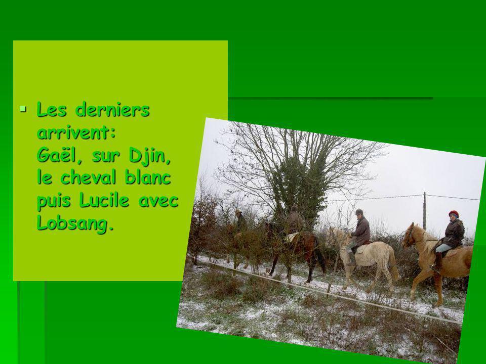 Les derniers arrivent: Gaël, sur Djin, le cheval blanc puis Lucile avec Lobsang.