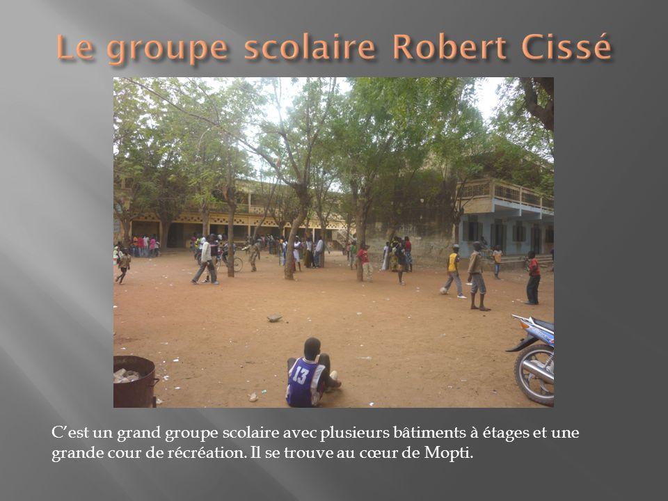 Cest un grand groupe scolaire avec plusieurs bâtiments à étages et une grande cour de récréation. Il se trouve au cœur de Mopti.