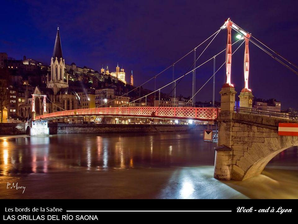 Week - end à Lyon Les bords de la Saône LAS ORILLAS DEL RÍO SAONA