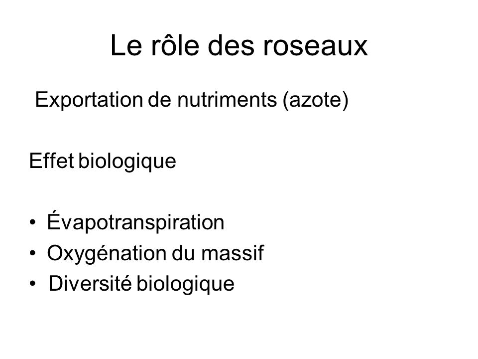 Le rôle des roseaux Exportation de nutriments (azote) Effet biologique Évapotranspiration Oxygénation du massif Diversité biologique