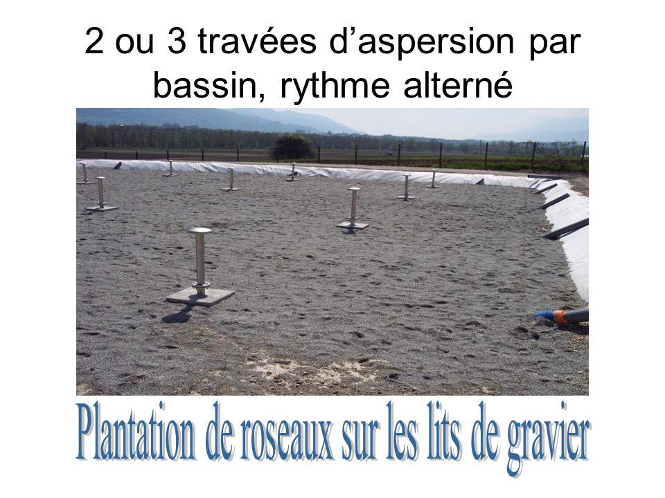 2 ou 3 travées daspersion par bassin, rythme alterné