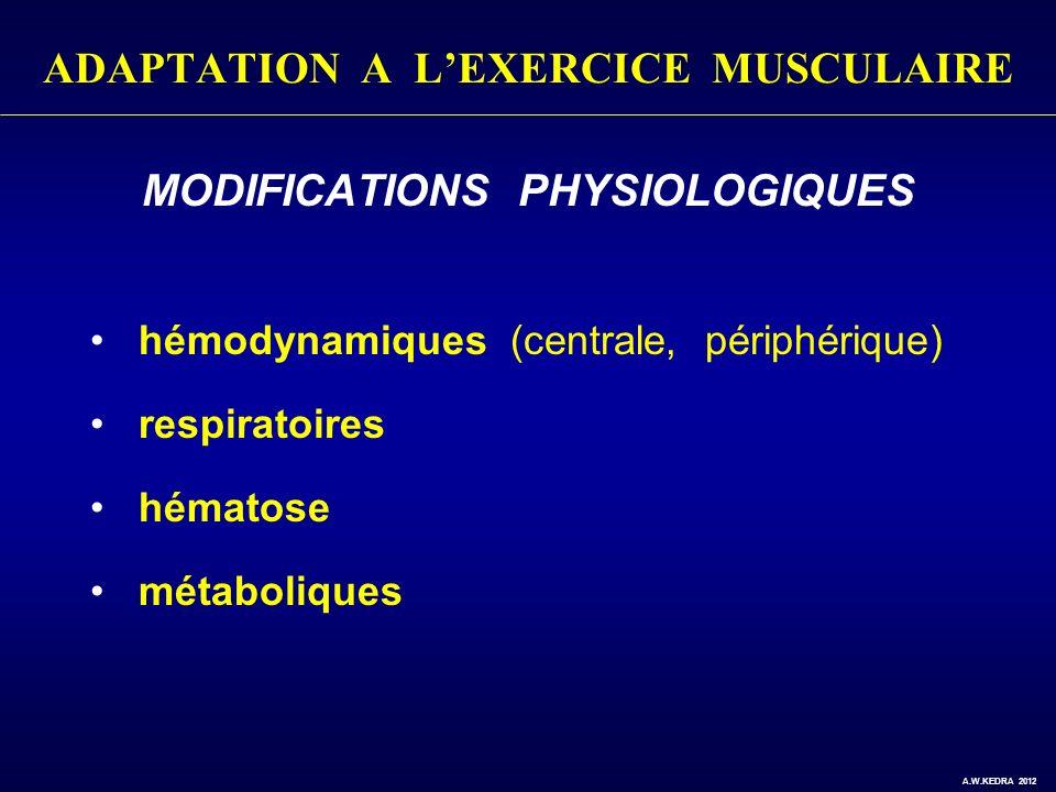 ADAPTATION A LEXERCICE MUSCULAIRE MODIFICATIONS PHYSIOLOGIQUES hémodynamiques (centrale, périphérique) respiratoires hématose métaboliques A.W.KEDRA 2