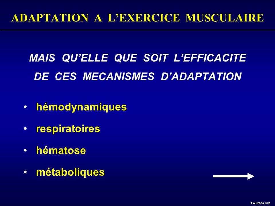 ADAPTATION A LEXERCICE MUSCULAIRE MAIS QUELLE QUE SOIT LEFFICACITE DE CES MECANISMES DADAPTATION hémodynamiques respiratoires hématose métaboliques A.
