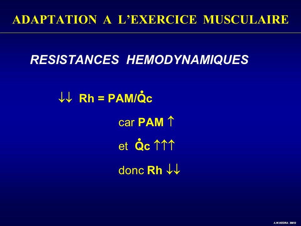 ADAPTATION A LEXERCICE MUSCULAIRE RESISTANCES HEMODYNAMIQUES Rh = PAM/Qc car PAM et Qc donc Rh A.W.KEDRA 20012