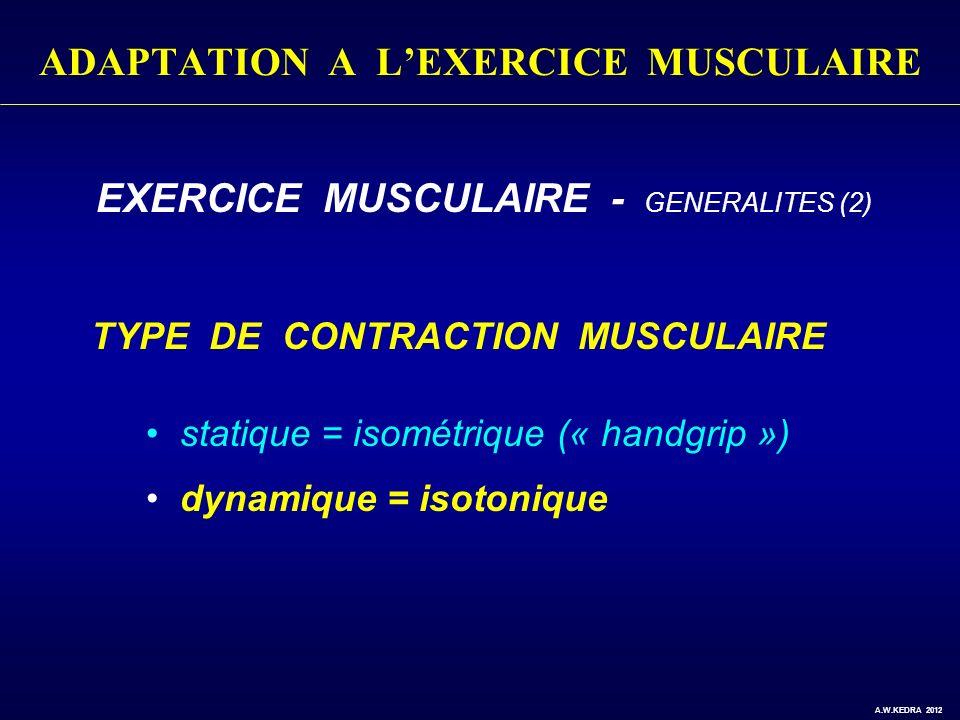 ADAPTATION A LEXERCICE MUSCULAIRE EXERCICE MUSCULAIRE - GENERALITES (2) TYPE DE CONTRACTION MUSCULAIRE statique = isométrique (« handgrip ») dynamique