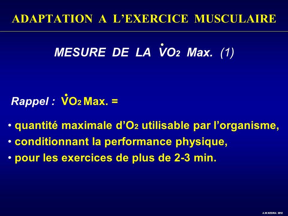 ADAPTATION A LEXERCICE MUSCULAIRE MESURE DE LA VO 2 Max. (1) Rappel : VO 2 Max. = quantité maximale dO 2 utilisable par lorganisme, conditionnant la p