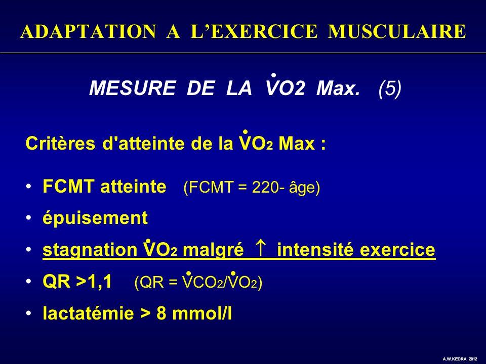 ADAPTATION A LEXERCICE MUSCULAIRE MESURE DE LA VO2 Max. (5) Critères d'atteinte de la VO 2 Max : FCMT atteinte (FCMT = 220- âge) épuisement stagnation