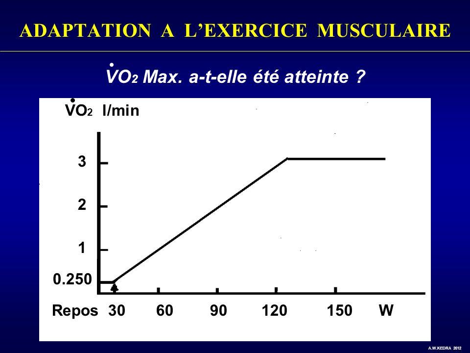 ADAPTATION A LEXERCICE MUSCULAIRE Repos 30 60 90 120 150 W VO 2 l/min 3 2 1 0.250 VO 2 Max. a-t-elle été atteinte ? A.W.KEDRA 2012
