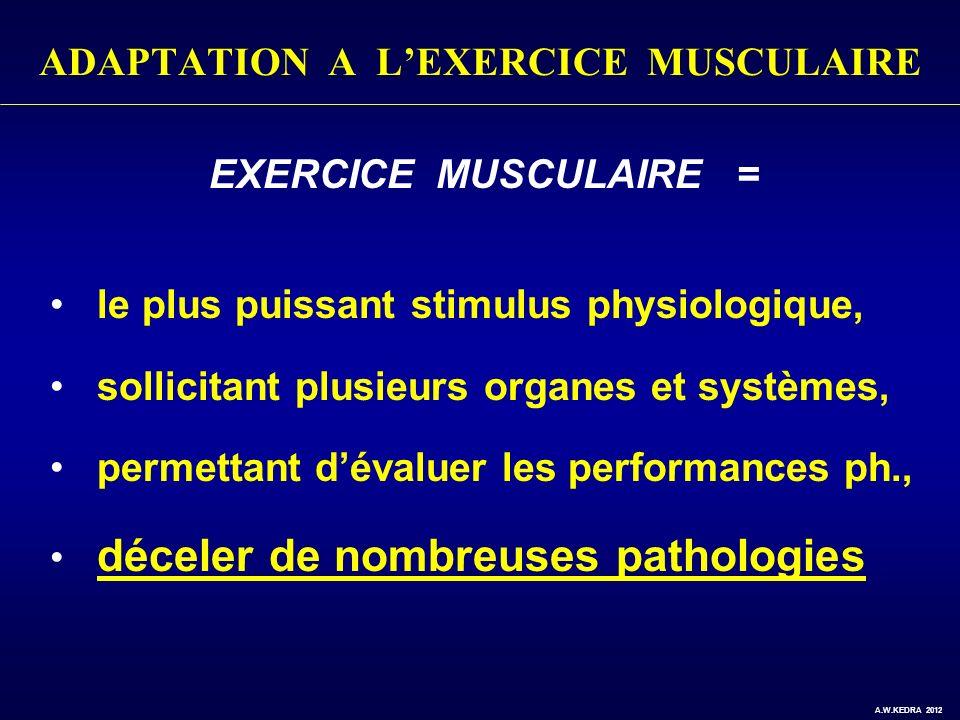 EXERCICE MUSCULAIRE = le plus puissant stimulus physiologique, sollicitant plusieurs organes et systèmes, permettant dévaluer les performances ph., dé