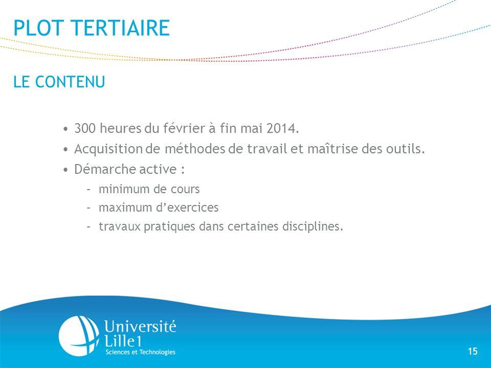 15 PLOT TERTIAIRE LE CONTENU 300 heures du février à fin mai 2014. Acquisition de méthodes de travail et maîtrise des outils. Démarche active : –minim