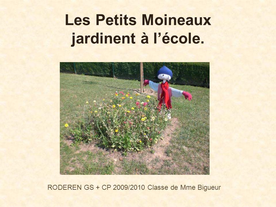 Les Petits Moineaux jardinent à lécole. RODEREN GS + CP 2009/2010 Classe de Mme Bigueur