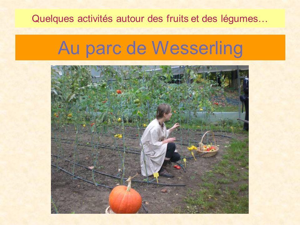 Au parc de Wesserling Quelques activités autour des fruits et des légumes…