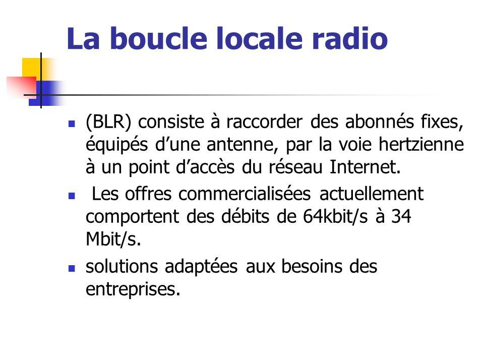 La boucle locale radio (BLR) consiste à raccorder des abonnés fixes, équipés dune antenne, par la voie hertzienne à un point daccès du réseau Internet