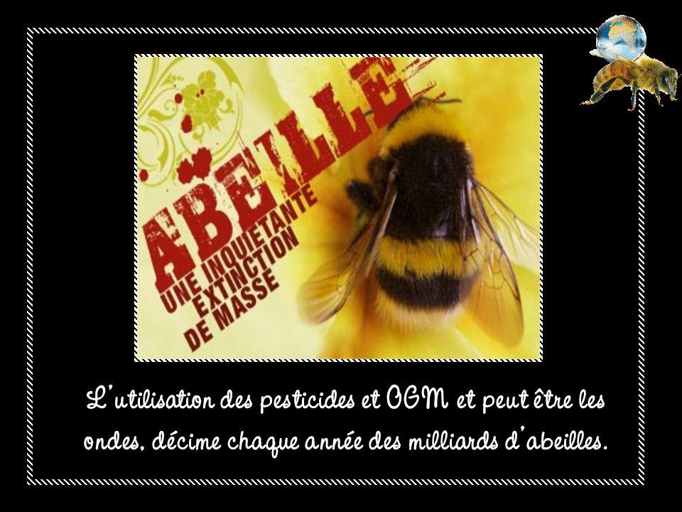 Leau de surface peut être contaminée par infiltration, déversement et ruissellement par les pesticides.