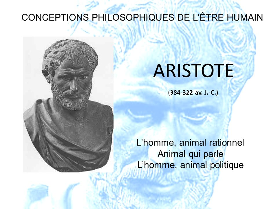 (384-322 av. J.-C.) ARISTOTE Lhomme, animal rationnel Animal qui parle Lhomme, animal politique CONCEPTIONS PHILOSOPHIQUES DE LÊTRE HUMAIN