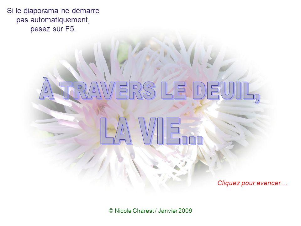 © Nicole Charest / www.lapetitedouceur.org La mort n est pas la perte la plus tragique dans la vie.
