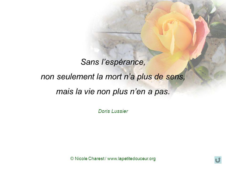 © Nicole Charest / www.lapetitedouceur.org « Est-il mort en paix ? senquerra-t-il. Oui, enfin je crois... Lorsque je suis revenue à la maison, je lai