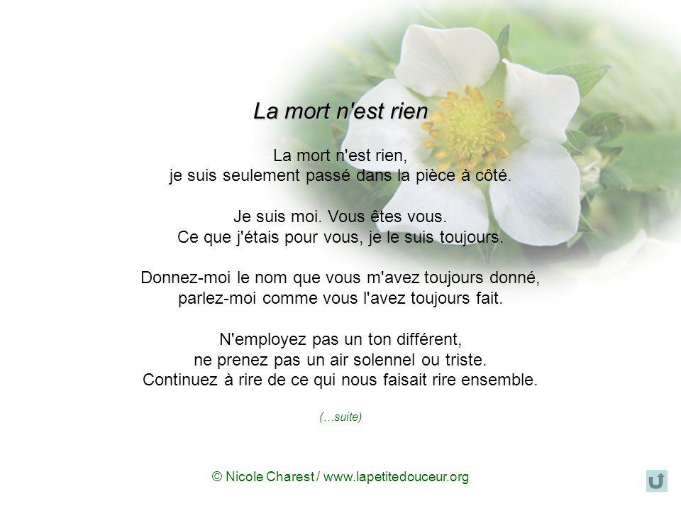 © Nicole Charest / www.lapetitedouceur.org Sans lespérance, non seulement la mort na plus de sens, mais la vie non plus nen a pas. Doris Lussier