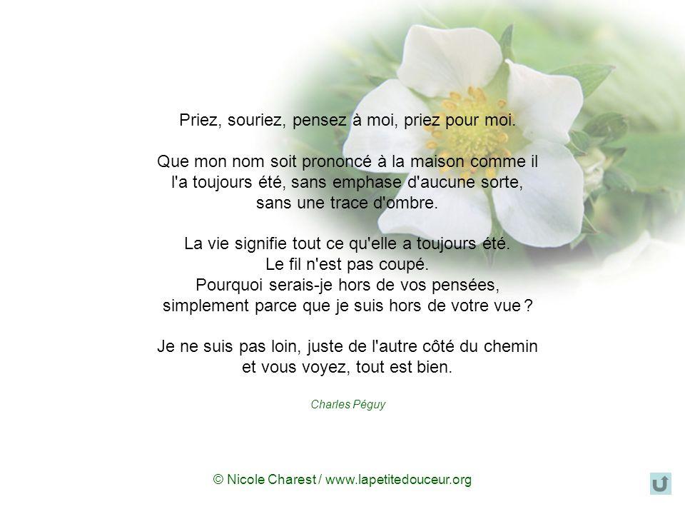 © Nicole Charest / www.lapetitedouceur.org La mort n'est rien La mort n'est rien, je suis seulement passé dans la pièce à côté. Je suis moi. Vous êtes