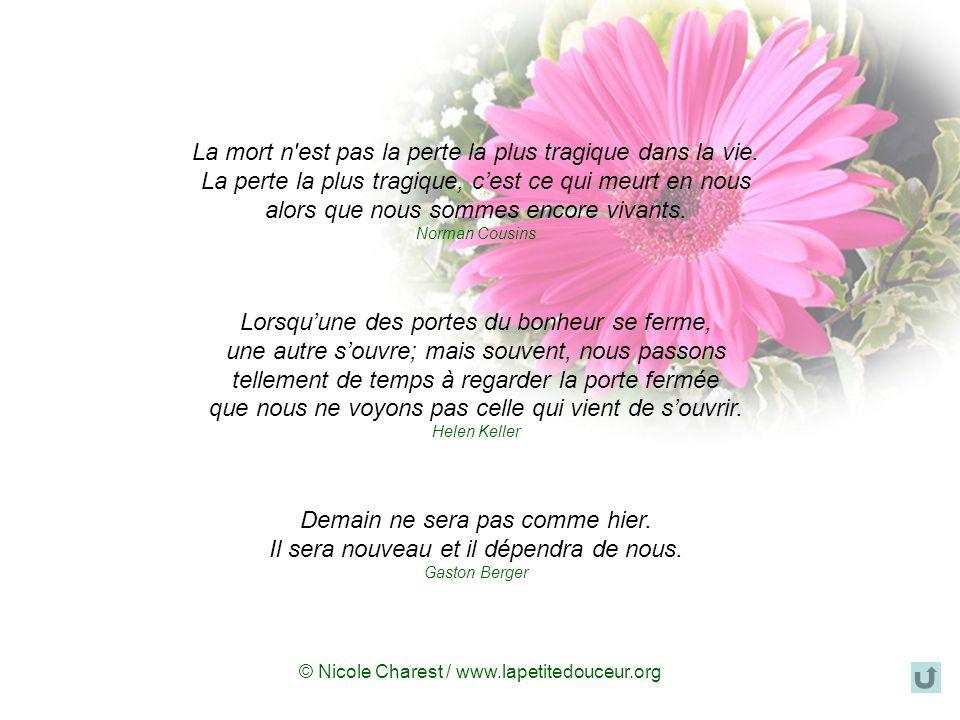 © Nicole Charest / www.lapetitedouceur.org On noublie jamais la personne décédée. Toutefois, il arrive un jour où on peut penser à elle et laimer sans