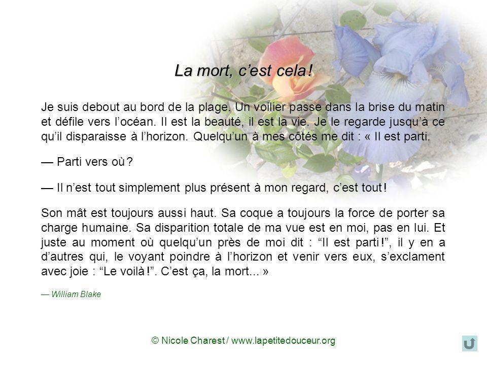 © Nicole Charest / www.lapetitedouceur.org Il faut comprendre la mort pour ne pas laisser de place à la tristesse.