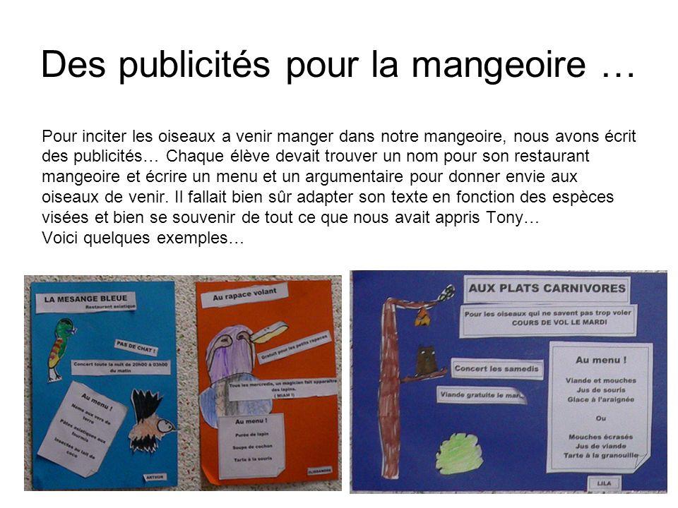 Des publicités pour la mangeoire … Pour inciter les oiseaux a venir manger dans notre mangeoire, nous avons écrit des publicités… Chaque élève devait