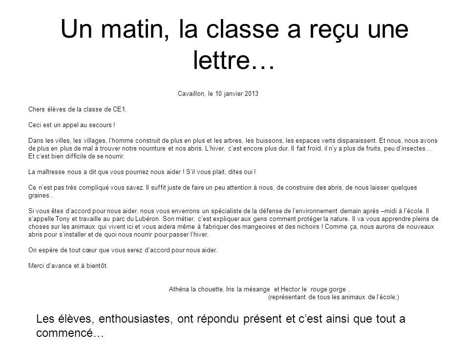 Un matin, la classe a reçu une lettre… Cavaillon, le 10 janvier 2013 Chers élèves de la classe de CE1. Ceci est un appel au secours ! Dans les villes,
