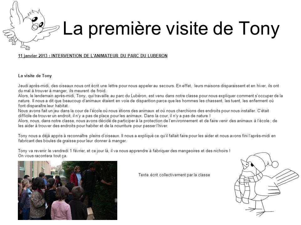 La première visite de Tony 11 janvier 2013 : INTERVENTION DE L'ANIMATEUR DU PARC DU LUBERON La visite de Tony Jeudi après-midi, des oiseaux nous ont é