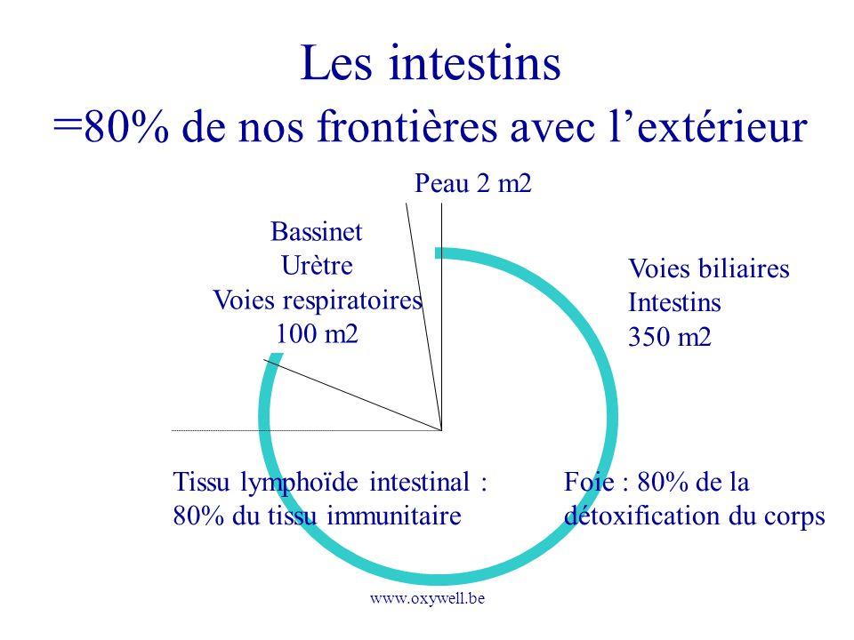www.oxywell.be Les intestins = 80% de nos frontières avec lextérieur Bassinet Urètre Voies respiratoires 100 m2 Peau 2 m2 Voies biliaires Intestins 35