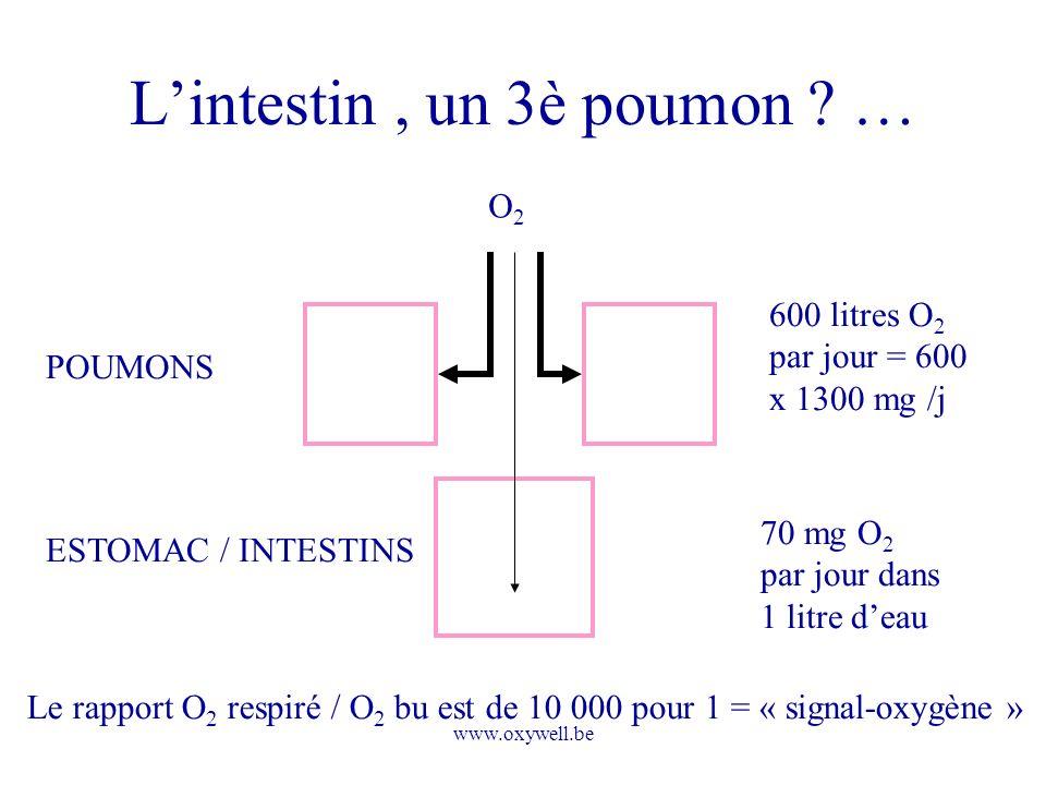 www.oxywell.be Lintestin, un 3è poumon ? … 600 litres O 2 par jour = 600 x 1300 mg /j POUMONS ESTOMAC / INTESTINS 70 mg O 2 par jour dans 1 litre deau