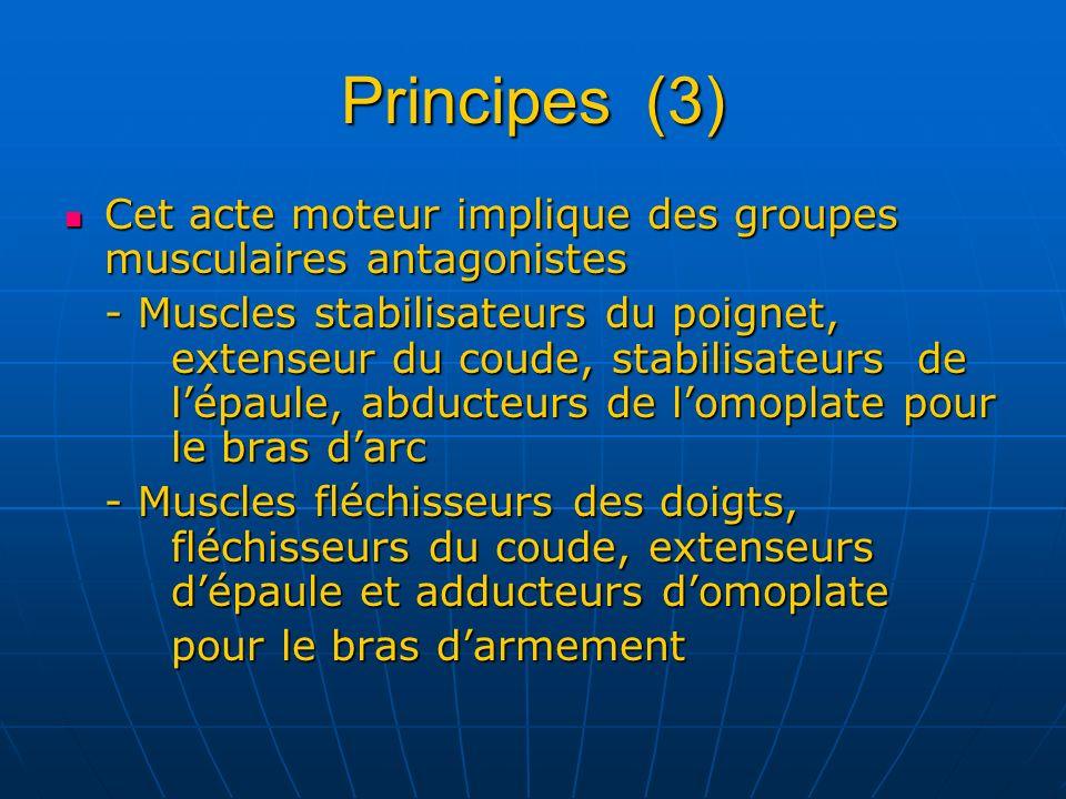 Principes (3) Cet acte moteur implique des groupes musculaires antagonistes Cet acte moteur implique des groupes musculaires antagonistes - Muscles st