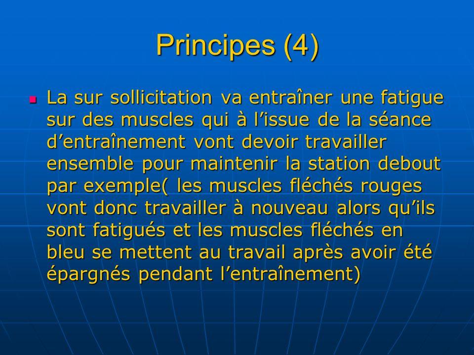 Principes (4) La sur sollicitation va entraîner une fatigue sur des muscles qui à lissue de la séance dentraînement vont devoir travailler ensemble po