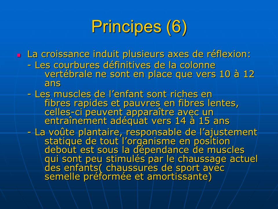Principes (6) La croissance induit plusieurs axes de réflexion: La croissance induit plusieurs axes de réflexion: - Les courbures définitives de la co