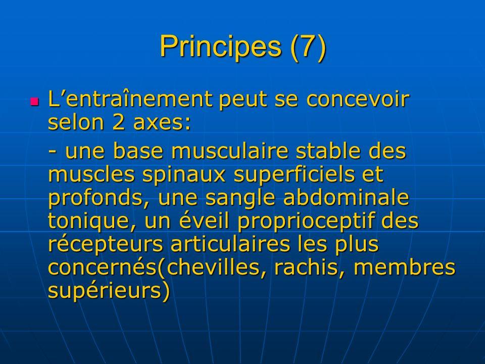 Principes (7) Lentraînement peut se concevoir selon 2 axes: Lentraînement peut se concevoir selon 2 axes: - une base musculaire stable des muscles spi