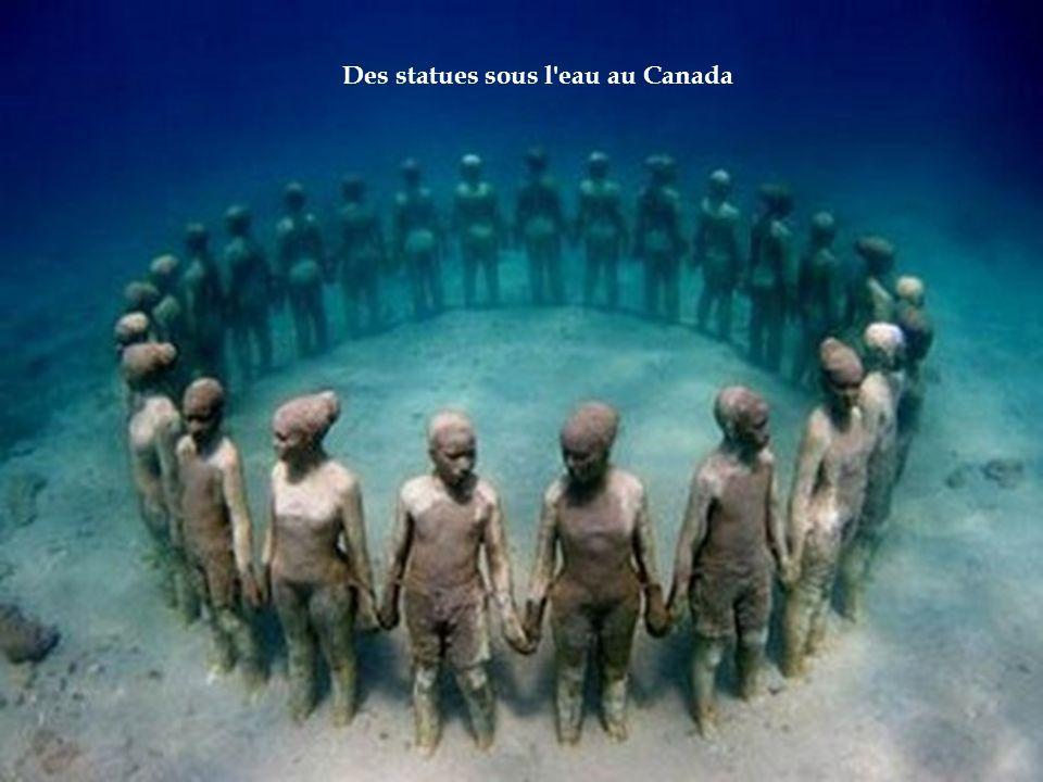 Etonnantes, illogiques, inquiétantes ou amusantes... Découvrez les statues insolites et originales à travers le monde. Cliquer pour le défilement Créa