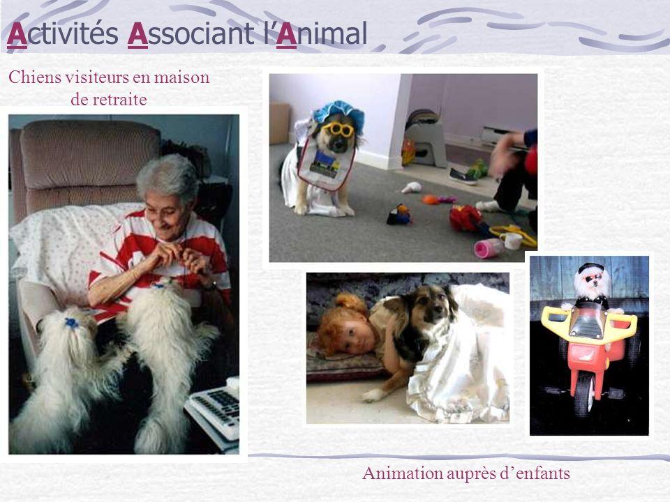 Chiens visiteurs en maison de retraite Activités Associant lAnimal Animation auprès denfants