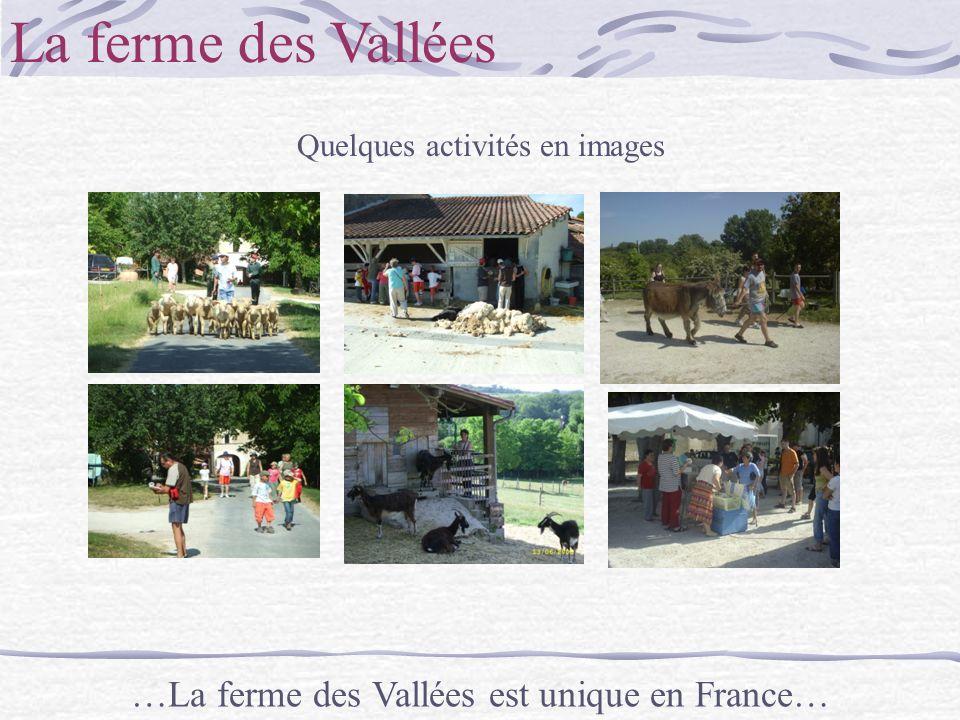 La ferme des Vallées Quelques activités en images …La ferme des Vallées est unique en France…