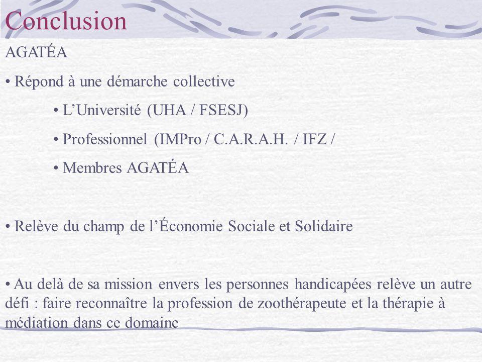 Conclusion AGATÉA Répond à une démarche collective LUniversité (UHA / FSESJ) Professionnel (IMPro / C.A.R.A.H. / IFZ / Membres AGATÉA Relève du champ