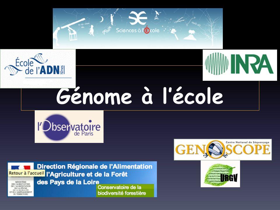 Génome à lécole